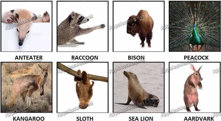 100 Pics Animals 49-56