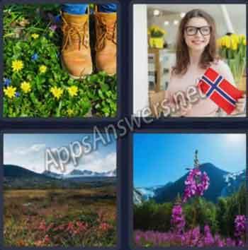 4-pics-1-word-daily-bonus-puzzle-26-Jan-2020-Answer-Norway-FLOWERS