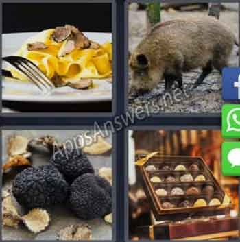 4-pics-1-word-daily-puzzle-28-Jan-2020-Answer-Norway-TRUFFLE